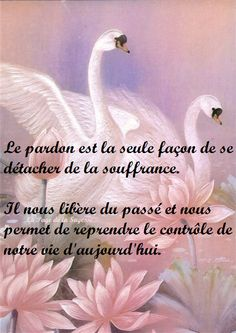 Positive Attitude, Positive Quotes, True Love Poems, Morning Greetings Quotes, French Quotes, Perception, Positive Affirmations, Great Quotes, Gratitude
