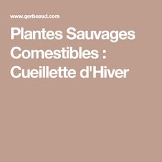 Plantes Sauvages Comestibles : Cueillette d'Hiver Nutrition, Permaculture, Nature, Edible Wild Plants, Healthy Eating Recipes, Food, Berries, January, Leaves