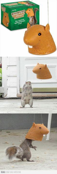 Cool & Unusual Products- Big Head Squirrel Feeder