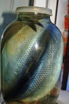Find out more about fishing as a stress relieve, including tips on catching fish and staying safe. Bulgarian Recipes, Russian Recipes, Smoothie Recipes, Salad Recipes, Top Salad Recipe, Thyme Recipes, Shellfish Recipes, Cookery Books, Cooking Recipes