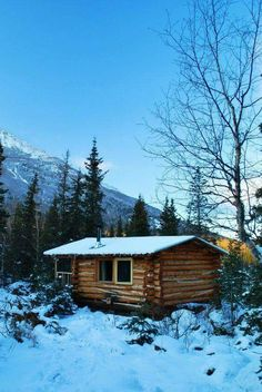 build own log cabin Small Log Cabin, Tiny House Cabin, Little Cabin, Log Cabin Homes, Log Cabins, Tiny Houses, Rustic Cabins, Design Rustique, Diy Cabin