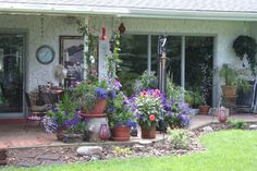 Flowers on house patio