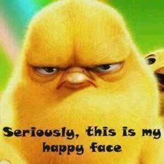 Seriously, this is my happy face funny easter happy chick happy easter happy day easter image Gym Humor, Workout Humor, Exercise Humor, Fitness Humor, Fitness Fun, School Humor, Fitness Motivation, I Smile, Make Me Smile
