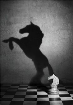 Horse-chess-figure-black-and-white-art-photography