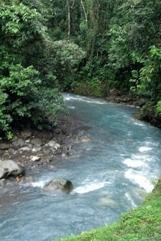 Blue river in Guanacaste Costa Rica #natureisthebestpainter