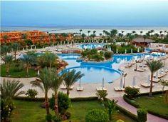 Hotel AA Amwaj 4*.  Fijne accommodatie. Direct aan zee met diverse koralen voor de kust. In de nabijheid van AA Amwaj diverse winkeltjes, restaurantjes en cafés.