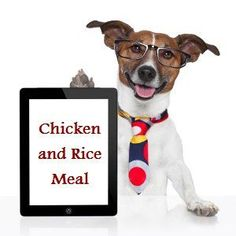 A dog with a sensitive stomach is normally kept on minimal food. The question is, are you compromising on its nutrition? Here are a few best food recipes that you can prepare at home, for dogs that suffer a sensitive stomach.