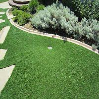 Custom Sized ProViri Synthetic Lawn 15' x 1' - Sam's Club