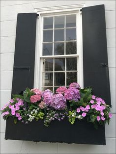 flowers for window boxes flowers for window boxes 32 Yorkshire 12 in. x 36 in. Vinyl Window Box Town and Country Mom: Act The Charleston, or a Peek at Mrs. Whaley's Garden and (Window) Box Seats 200 SWAN RIVER DAISY MIX Brachyscome Flower Seeds +Gift Window Box Plants, Window Box Flowers, Balcony Flowers, Window Planter Boxes, Flowers Garden, Fall Window Boxes, Planter Ideas, Window Box Diy, Indoor Window Boxes