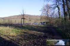 Strecke Bonn-Oberkassel - Kloster Heisterbach 02.02.2014 - den Kaffee- und Kuchenort lässt man links liegen und biegt gleich rechts ab