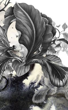 Lovely illustrations by kahori maki