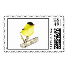 Baby goldfinch watercolor art bird painting postage