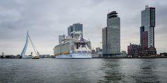 Grootste cruiseschip ter wereld legt aan in Rotterdam   Foto   AD.nl