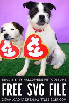 This Ty Beanie Baby costume is easy to make and an adorable on pets but and their humans, too. Get the free SVG for this cheap and adorable DIY costume.  #beaniebabies #halloween #halloweencostume #halloweencraft #freesvg Pet Halloween Costumes, Pet Costumes, Dog Halloween, Halloween Crafts, Costume Ideas, Halloween Town, Fall Crafts, Holiday Crafts, Halloween Ideas