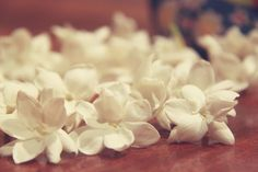 Sampaguita (Arabian Jasmine)- National Flower of the Philippines, if it's available in Hawaii I'd like to use it in our florals Leg Tattoos, Cool Tattoos, Arabian Jasmine, Sampaguita, Filipino Culture, Filipino Tattoos, Feminine Tattoos, My Cup Of Tea, Filipina