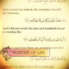 Your purpose in life? Worship Allah SWT. He who created you.