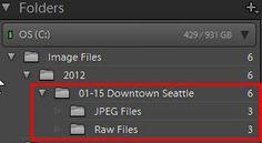 Raw+JPEG Continued:Managing Raw + JPEG Files In Lightroom
