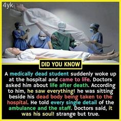 Amazing Interesting Facts, Do You Know Wierd Facts, Wow Facts, Intresting Facts, Real Facts, Wtf Fun Facts, Funny Facts, Interesting Science Facts, Interesting Facts About World, Unusual Facts