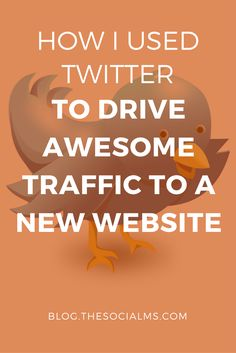 To market successfully, I had to learn Twitter. Twitter made me a marketing pro and enabled me to grow traffic for any business without advertising