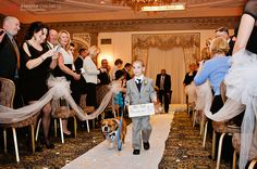 Best Ring Bearer duet! We love that one of our couples incorporated their best fur friend as a ring bearer!   Photo Credit: www.jennchildress.com www.Hoteldupont.com/weddings