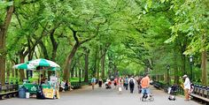 Central Park: The Granddaddy. This is where New Yorkers come to breathe, unwind and escape the city.  Many tours explore the park, including Bike and Roll, the Central Park TV & Movie Sites Tour and Central Park Sightseeing. The park is dotted with food vendors selling everything from chewy pretzels to hot dogs.