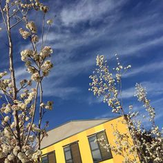 eCOHOUSING Spring of #cohousing in Spain #Trabensol