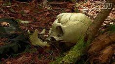 Der Aokigahara-Wald ist der beliebteste Ort Japans, um Selbstmord zu begehen. Nach der Veröffentlichung des Romans Kurios Jukai, in dem ein Suizid in eben diesem Wald beschrieben wird, begann ein Run von lebensmüden Nachahmern auf dieses Areal.