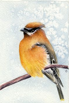 Winter Waiting Original 4 x 6 Watercolour by Squashedtoad on Etsy