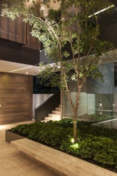 ML Residence, Mexiko-Stadt, 2012 – Gantous Arquitectos - Garten DIY Amazing Architecture, Landscape Architecture, Interior Architecture, Landscape Design, Garden Design, House Design, Tropical Architecture, Creative Architecture, Design Design