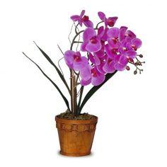 Arranjo Orquideas Phalaenopsis 60x30 cm