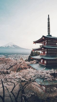 There are many beautiful places to visit in Japan all year round. The difficulty is choosing which place you want to go to the most. Place in japan, secret places in japan Aesthetic Japan, Travel Aesthetic, Monte Fuji Japon, Travel Photographie, Fuji Mountain, Photographie Portrait Inspiration, Japon Tokyo, Japan Art, Japan Japan