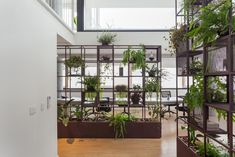 Open VC Office: A Cozy Work Environment with A Harmony of Integration and Privacy – Futurist Architecture Open Office, Cool Office Space, Office Entrance, Entrance Design, Office Environment, Environment Design, Office Dividers, Office Partitions, Room Dividers