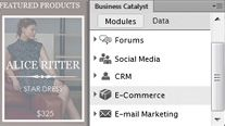 Business Catalyst Features