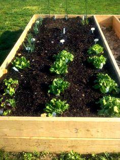 My raised garden bed 4/16/12