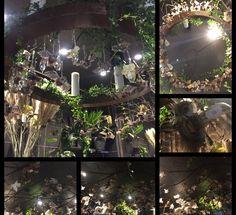 25.10.17 Hva har du gjort? Hengt opp ugler som utstilling i taket i grener og øya Hva gikk bra? Jeg syntes det ble bra Hva kunne du gjort annerledes? Hengt de opp annerledes