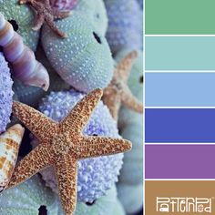 Seaside #patternpod #patternpodcolor #color #colorpalettes