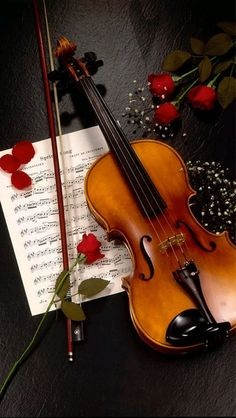 The Enchanted Cove: Violin and roses