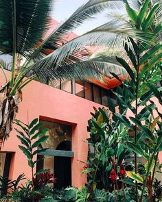 50 ideas for house ideas exterior tropical plants Estilo Tropical, Tropical Vibes, Tropical Plants, Tropical Colors, Tropical Garden, Exterior House Colors, Interior And Exterior, Interior Design, Design Living Room