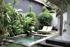 Entire home/apt in Ubud, ID. Beautiful Villa 20 minutes from Ubud Central Totally private, serviced daily. Double story with gorgeous deck upstairs. In the heart of Penestanan. Close to Alchemy, Lala Lilies and Intuitive Flow Yoga Studio Building A Swimming Pool, Small Swimming Pools, Small Backyard Pools, Backyard Pool Designs, Small Pools, Swimming Pool Designs, Backyard Landscaping, Lap Pools, Indoor Pools