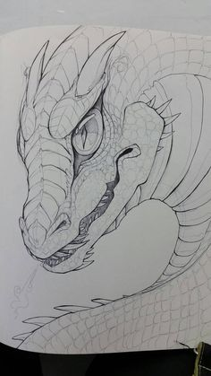 when I discovered my love of ballpoint pen drawings!Back when I discovered my love of ballpoint pen drawings! Easy Dragon Drawings, Cool Art Drawings, Cute Animal Drawings, Pencil Art Drawings, Animal Sketches, Art Drawings Sketches, Easy Drawings, Dragon Sketch, Ballpoint Pen Drawing