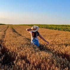Golden wheat fields in the northern Serbian province of Vojvodina.   Златна житна поља у северној српској покрајини Војводини.   Photo: @panonska_vila