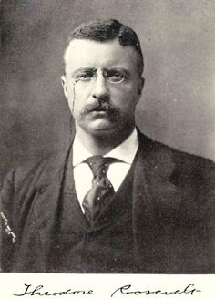 A very nice reader that details the life and accomplishments of Theodore Roosevelt – hunter, general, statesman.