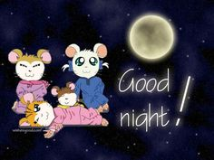 Here we provide you good night messages, messages for goodnight, sweet good…