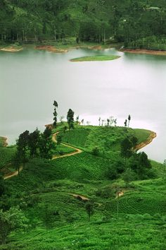 Ceylon Tea Trails, Hatton by Sri Lanka Tailormade, via Flickr