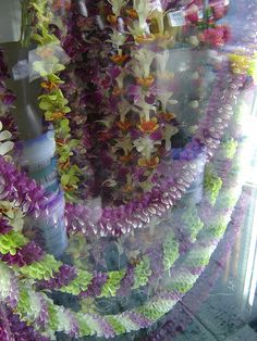 Leis in a cooler