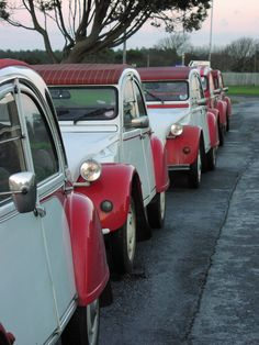 For the love of Dolly! 2CV Dolly's