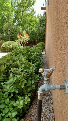 solid brass garden hose faucet taps verdigris bronze snail