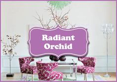 Radiant Orchid Board | Pantone 2014 Color of the Year