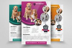 Pet Shop Business Flyer Template by Business Flyers on @creativework247
