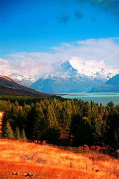 What new coffee drink would you try if you could enjoy a hot cup in Mount Cook, New Zealand? #Coffee #Travel #NewZealand